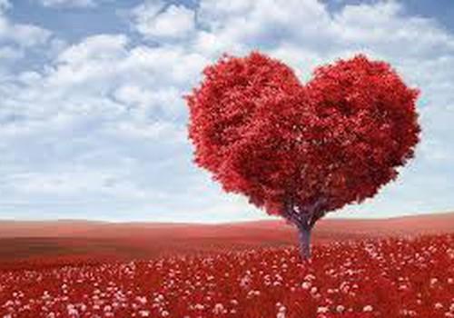 Širdis  - kaip padėti jai plakti sveikai ir stipriai?