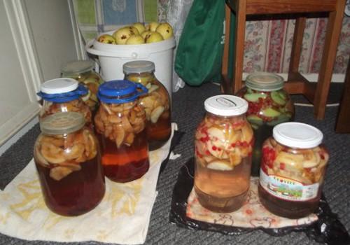 Obuolių ir uogų kompotai