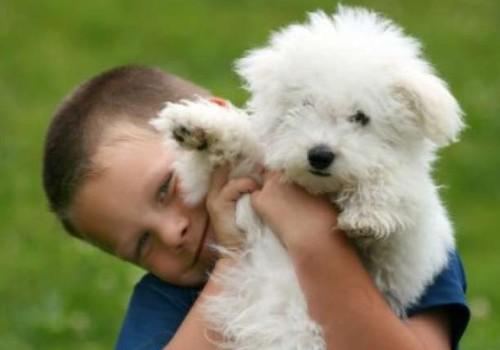 Mama, noriu  šuniuko!