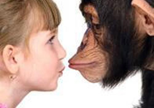 Kaip išmokyti vaiką mandagumo