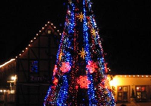 Uostamiestyje sužibo Kalėdų eglė