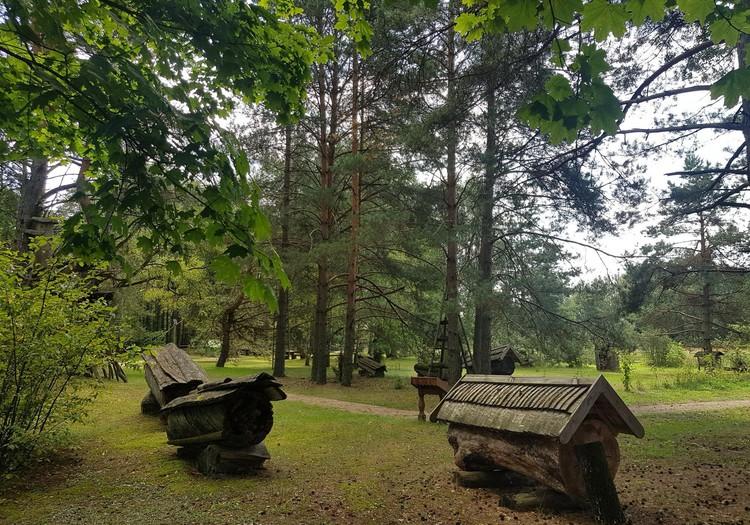 Vasaros gidas: drevinės bitininkystės ekspozicija