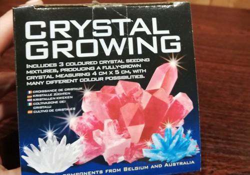 TOKIA MŪSŲ KASDIENYBĖ. Kristalo auginimas
