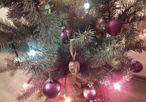 Puošiamės namus ir laukiame Kalėdų