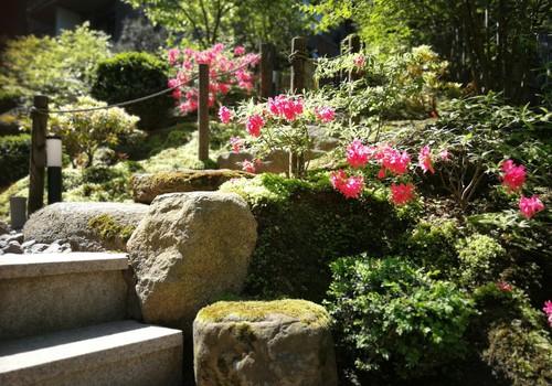 Vasaros gidas: Japoniškas sodas SEI SHIN En