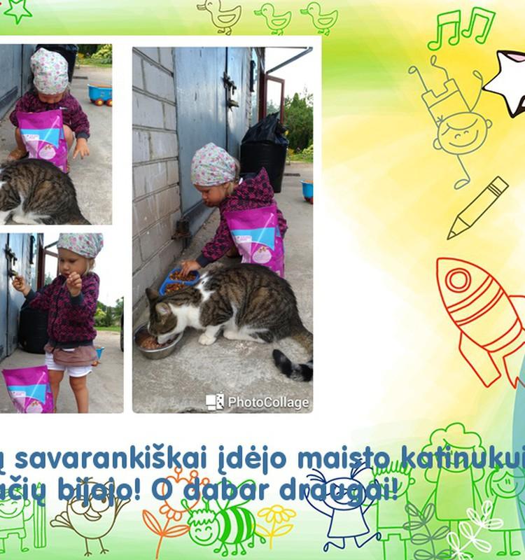 Rupinuosi katinu :)