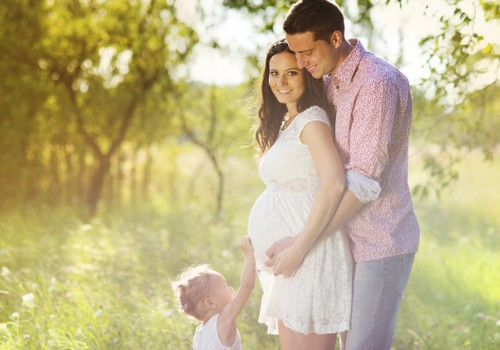 Erkė įkando nėštutei: ar tai gali pakenkti būsimam mažyliui?