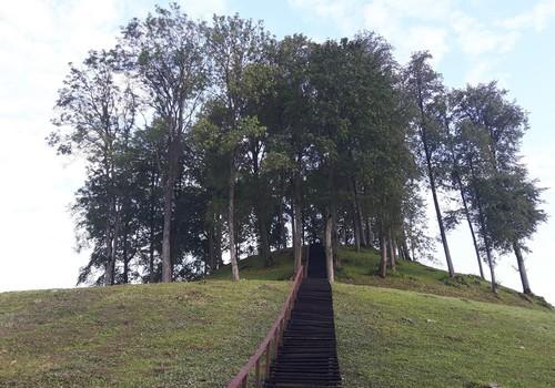 Augustės dienoraštis: per lietuviškas džiungles - link nuostabaus Pagrybio piliakalnio