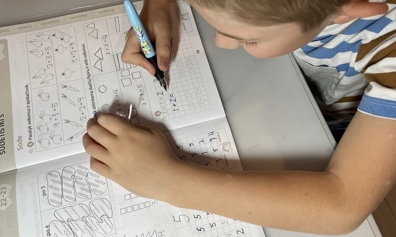 Namų mokymas