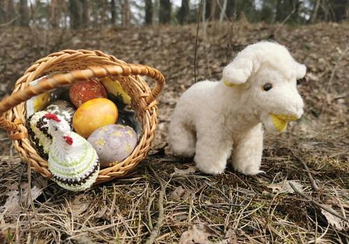 Nuotolinės kiaušinių ridenimo varžybos