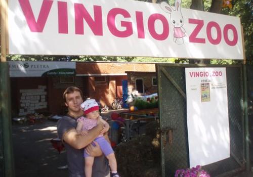 Mini zoo Vingio parke Vilniuje